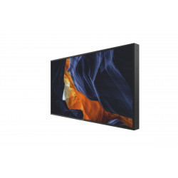 Moniteurs LED/OLED PHILIPS 55BDL3002H/00