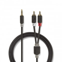 Câbles audio NEDIS CABW22200AT100