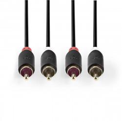 Câbles audio NEDIS CABP24200AT20