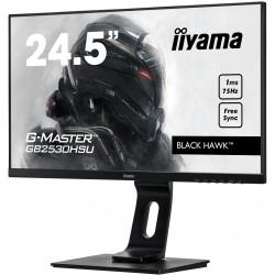 Moniteur PC IIYAMA GB2530HSU-B1
