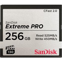 Support de Stockage Sandisk SDCFSP256GG46D 256GB