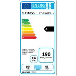Télévision SONY KD65XH8096BAEP